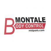 Body Control (11)